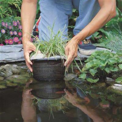 корзина для высадки водных лилий 22х11,5см Coraplax (Испания) для высадки растений