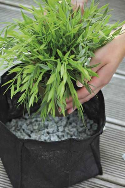 корзина для высадки водных растений oase, 30х30см Oase (Германия) для высадки растений