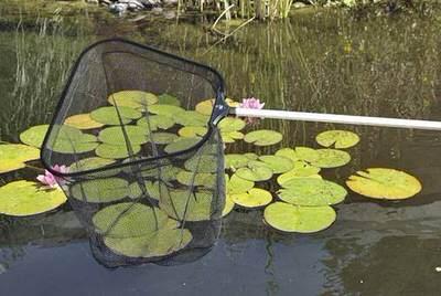 сачок для рыб. oase profi fish net, черный Oase (Германия) сачки