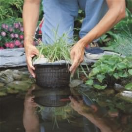 корзина для высадки водных растений 27х27см Coraplax (Испания) для высадки растений