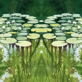 Удобрения для прудовых растений Vincia Aqua Plant Tabs, 400г